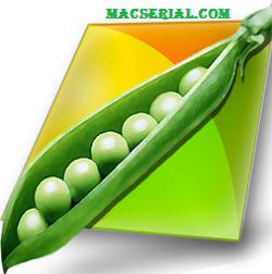 PeaZip 6.3.1 (64-Bit) Latest Free Download