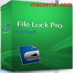 GiliSoft File Lock Pro 11 Crack + Registration Full Download